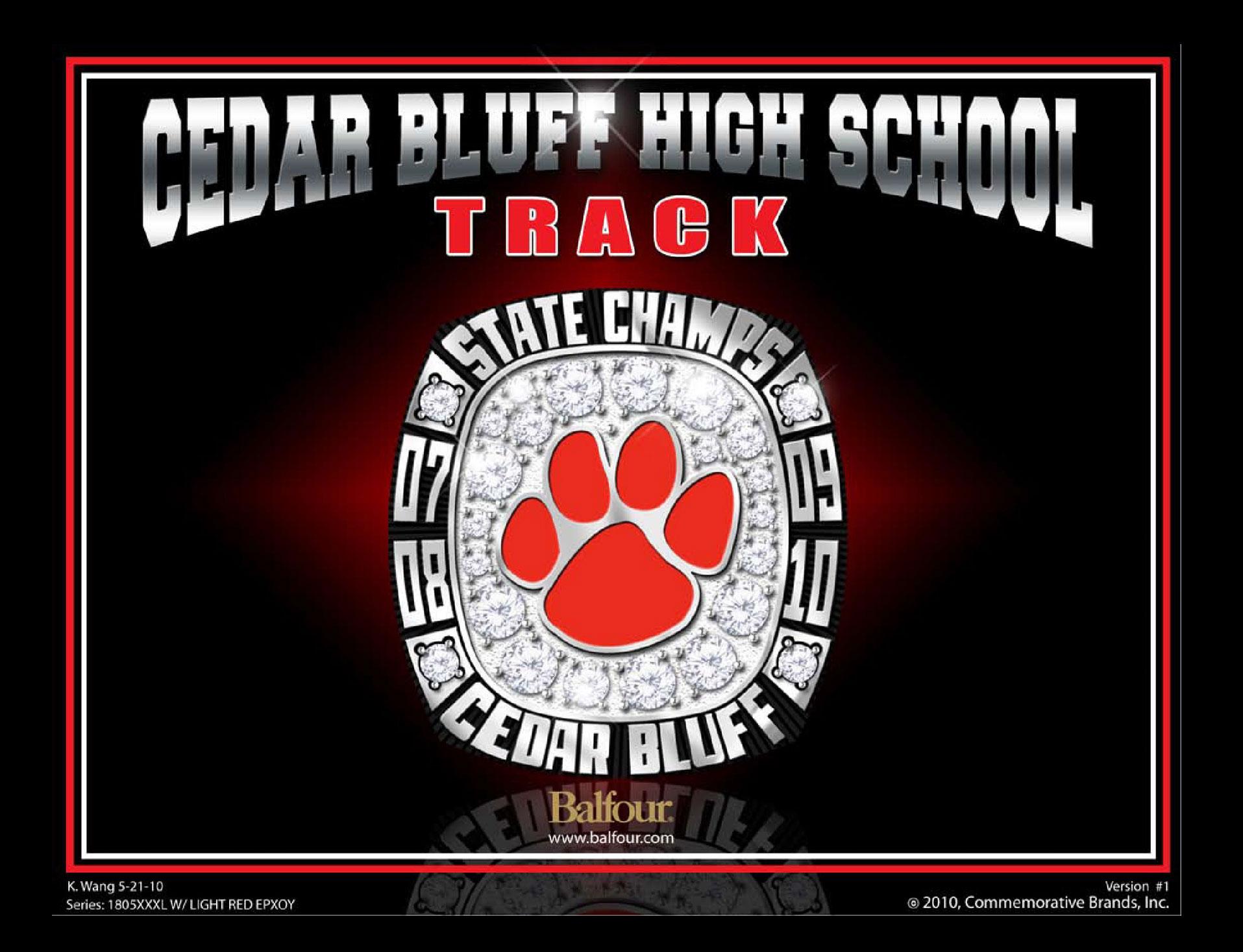 Alt cedar bluff track high school championship rings
